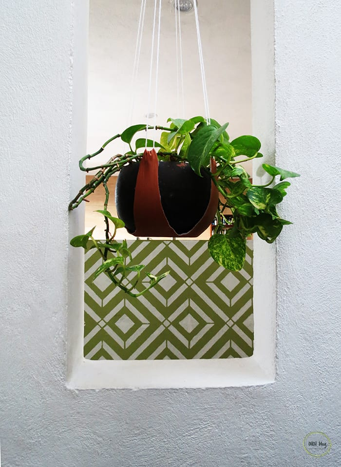 plant hanging and stencil wall
